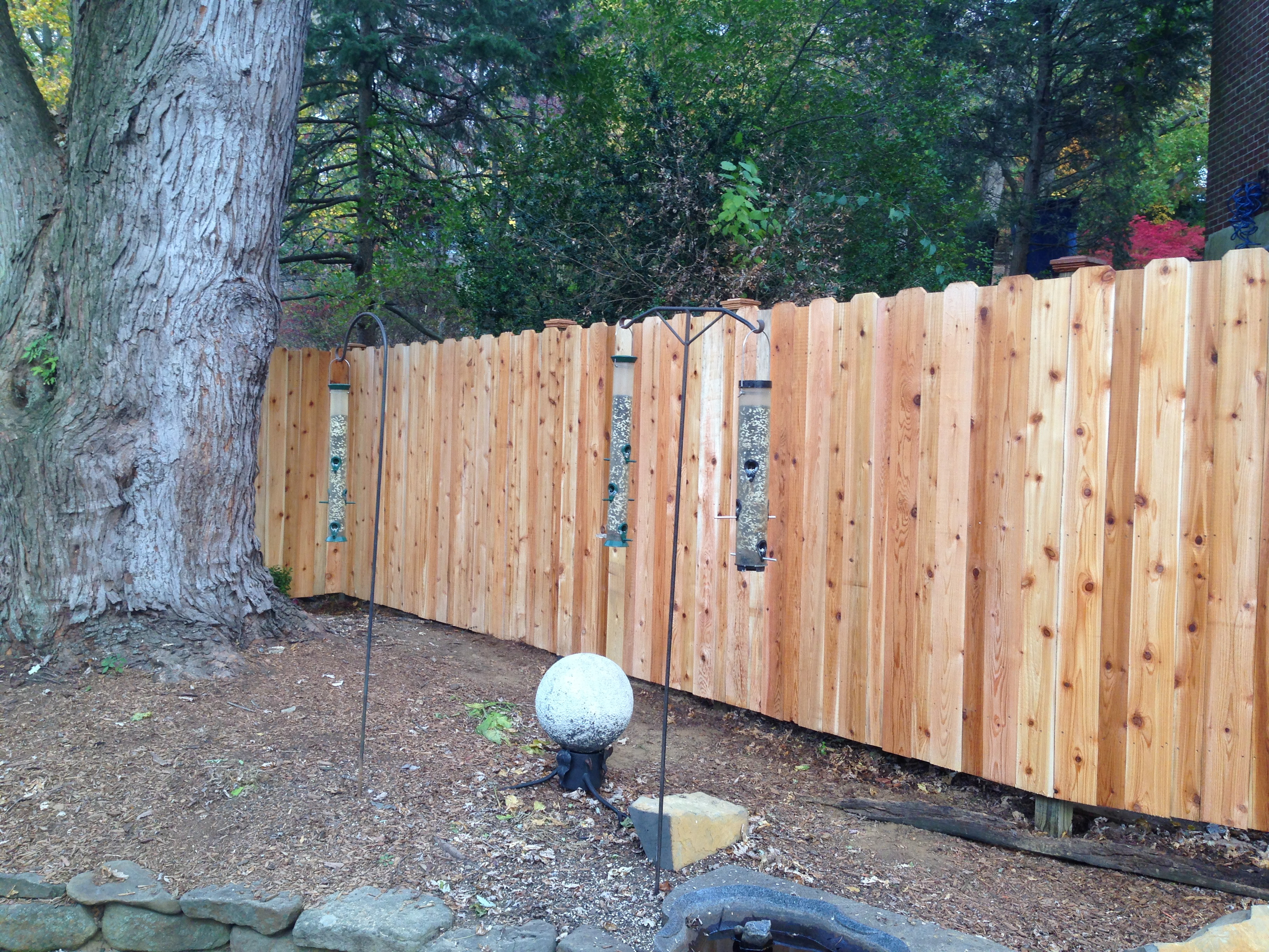 Cedar Privacy Fence In Alternating Pickets Aka The Fence